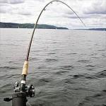 С 15 апреля в Башкирии вводится запрет на ловлю рыбы