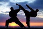 Итог X-ого Всероссийского Форума боевых искусств в Уфе