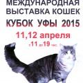 Кубок Уфы-2015