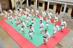 В Уфе пройдет массовая тренировка каратистов