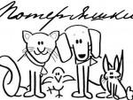 15 августа — Международный день бездомных животных