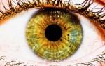 Когда следует посетить офтальмолога