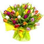 Речь и символика цветов. Какие цветы подарить?