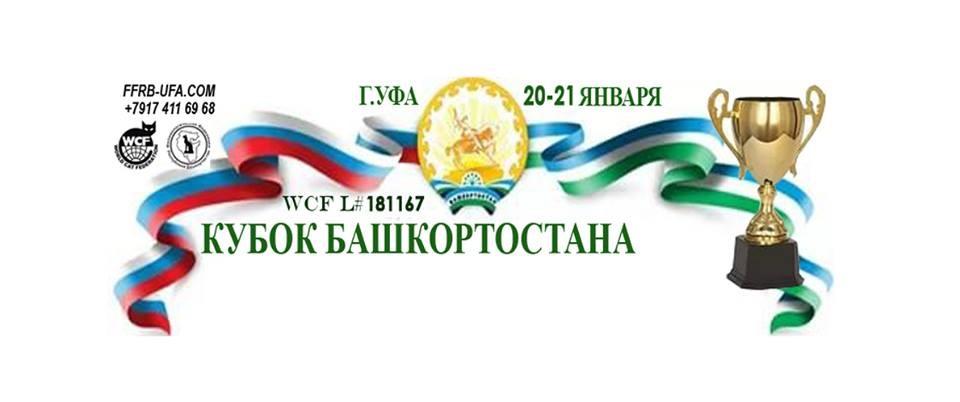 Международная выставка кошек «VI Кубок Башкортостана»