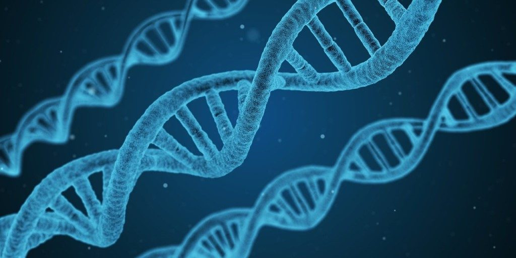 Геном финансиста