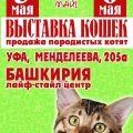 Международную выставку кошек 5-6 мая 2018