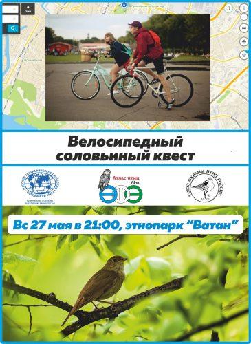велосипедный квест