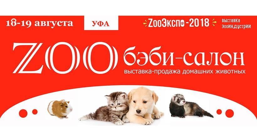 ZOO Бэби-салон