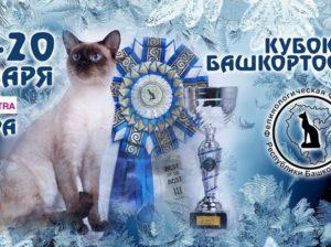 VII Кубок Башкортостана